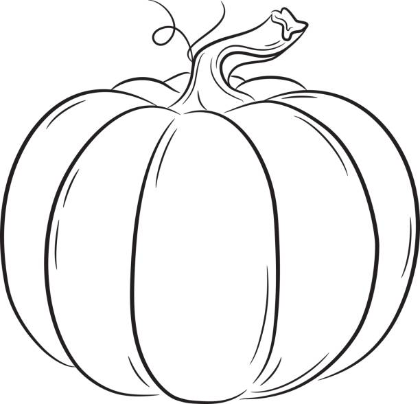 Best Black And White Pumpkin Illustrations, Royalty.