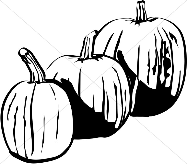 Three Black and White Pumpkins.