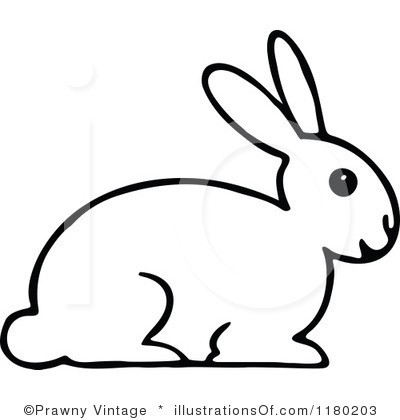 Rabbit Clipart Black And White.