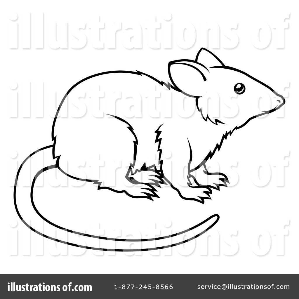 Black And White Rat Clipart.