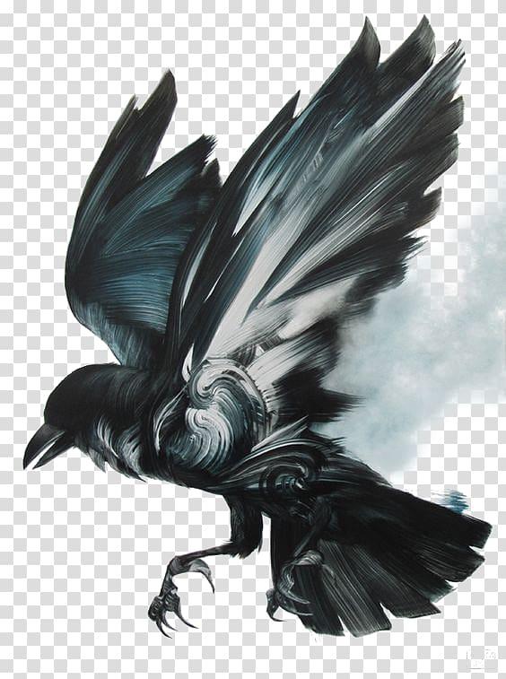 Black and white raven , Black Birds transparent background.