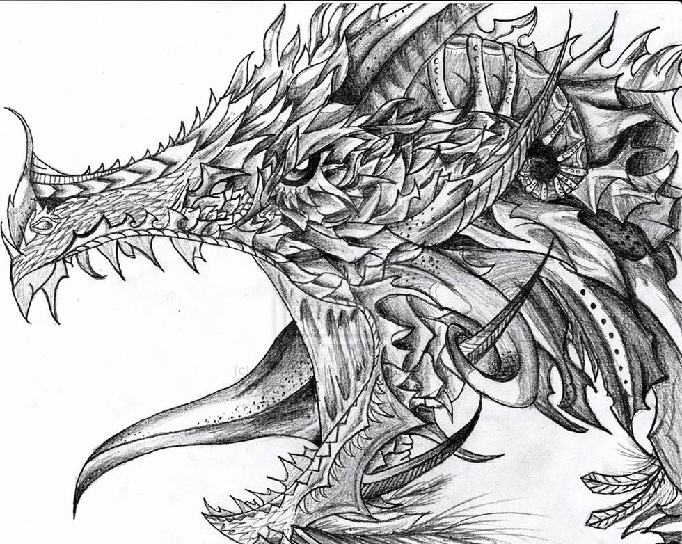 Stunning and realistic dragon drawings from around the world.