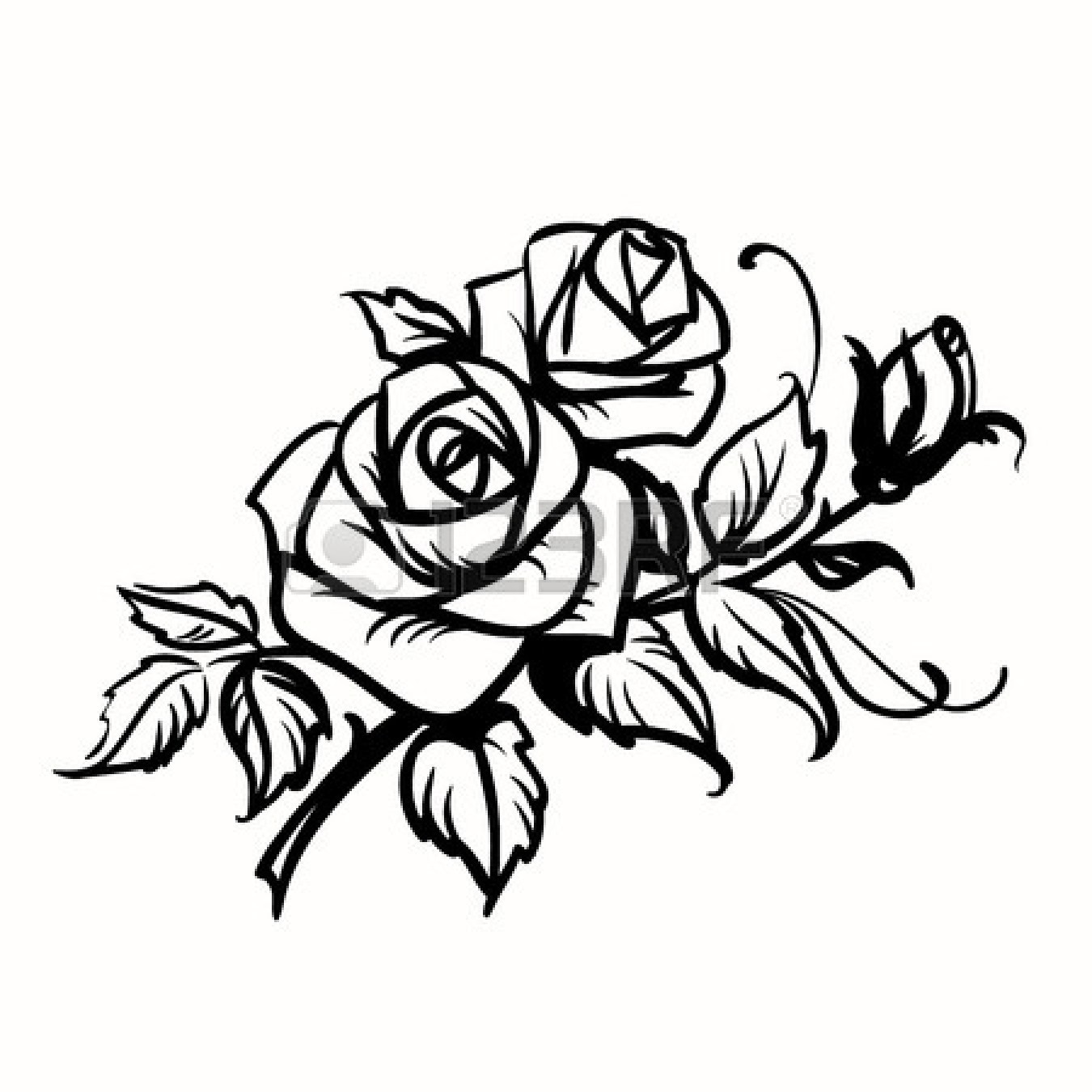 Black And White Pictures Of Roses.