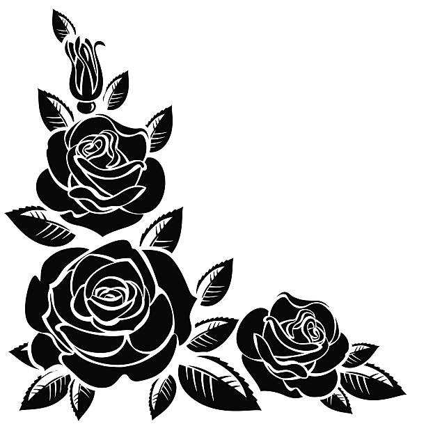 Top 60 Black And White Rose Clip Art Vector Graphics Gorgeous Roses.