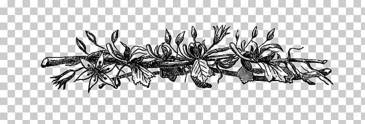 Garlic bread Black and white , rustic flowers PNG clipart.