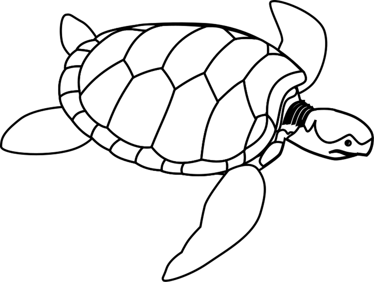 Free Sea Turtle Clipart Black And White, Download Free Clip.