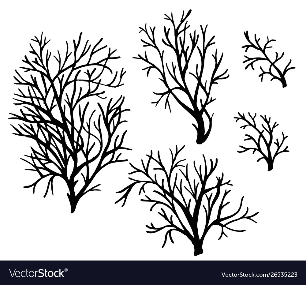 Sea corals and seaweed black silhouette.