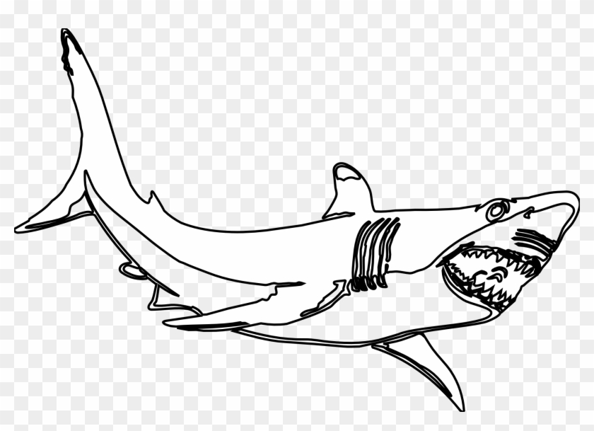 Great White Shark Clipart Black And White.