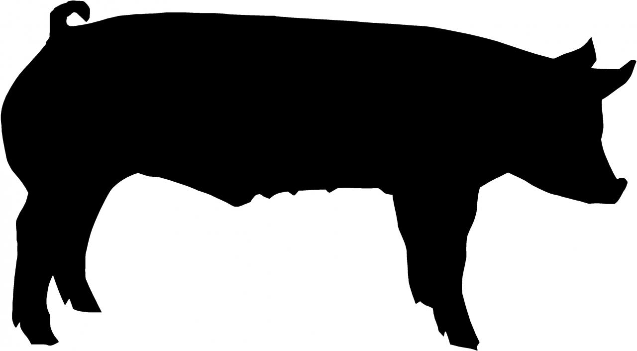 Black And White Show Pig Clipart.