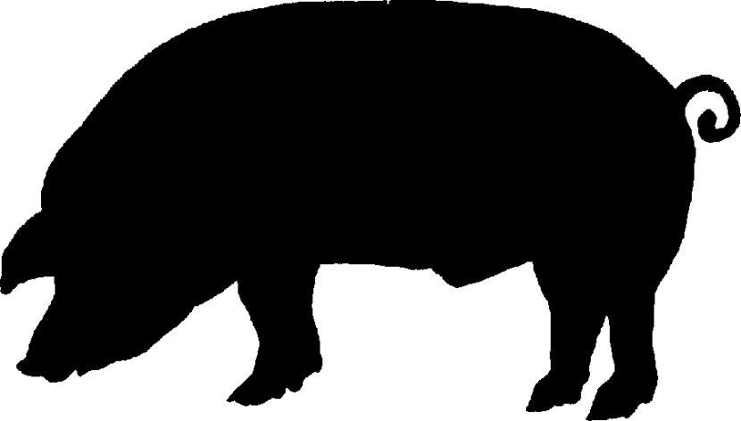 Pig Silhouette at GetDrawings.com.