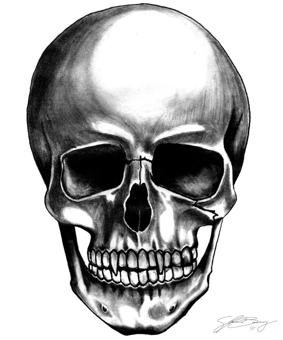 Girl Skull PNG HD Transparent Girl Skull HD.PNG Images..