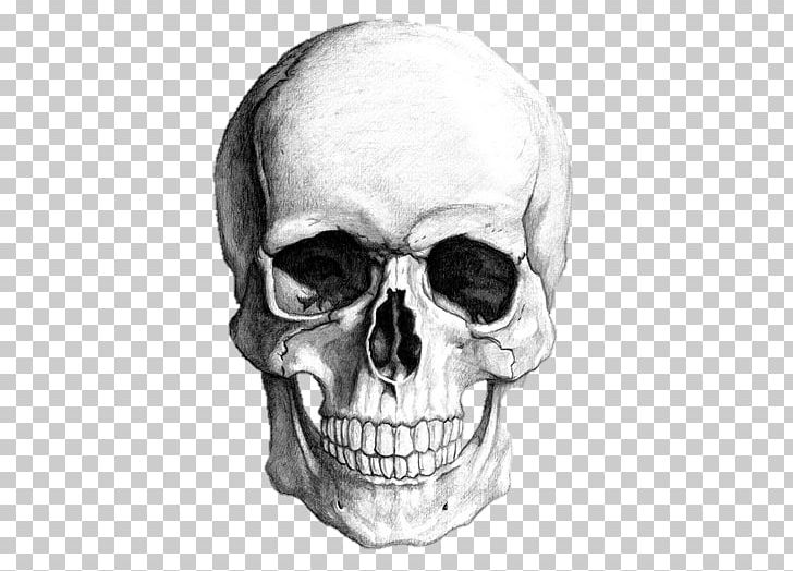 Drawing Skull Human Skeleton Art PNG, Clipart, Art, Black And White.