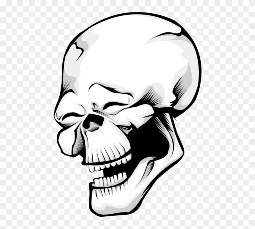 Skull Transparent Png.