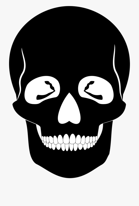 Human Skull Bone Anatomy Skeleton.