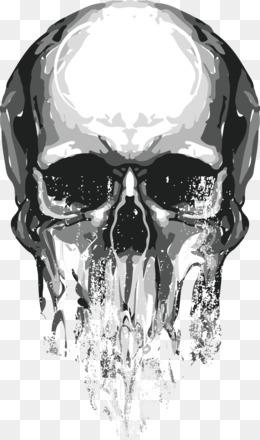 White Skull Png (36+ images).