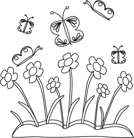 Black and White Spring Flowers and Butterflies.