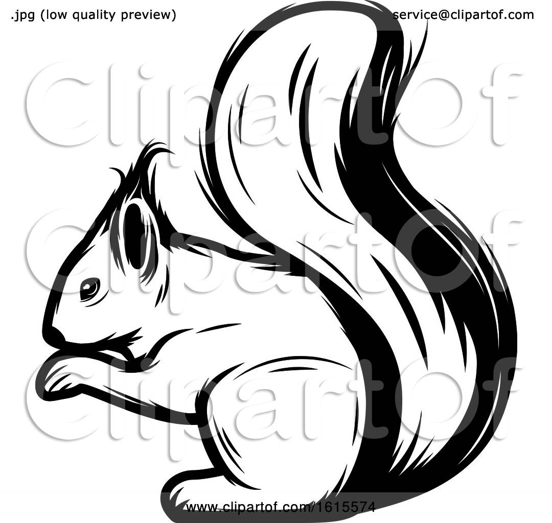 Clipart of a Black and White Squirrel.