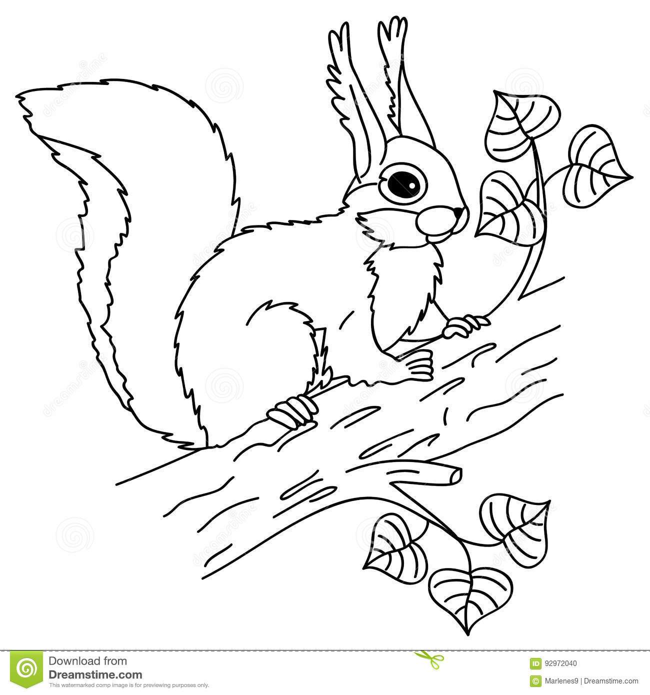 Black and white squirrel clipart 8 » Clipart Portal.