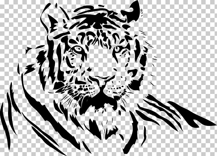 White Tiger Drawing TIGER PNG Clipart Free Cliparts UIHere.