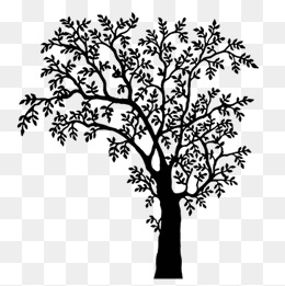 Black And White Trees Png & Free Black And White Trees.png.
