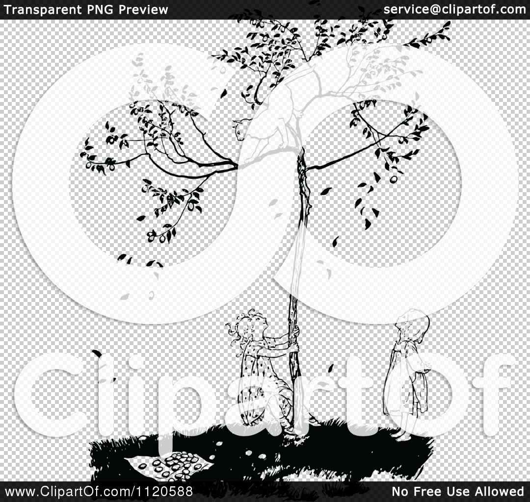 Clipart Of A Retro Vintage Black And White Cat In A Tree Above.