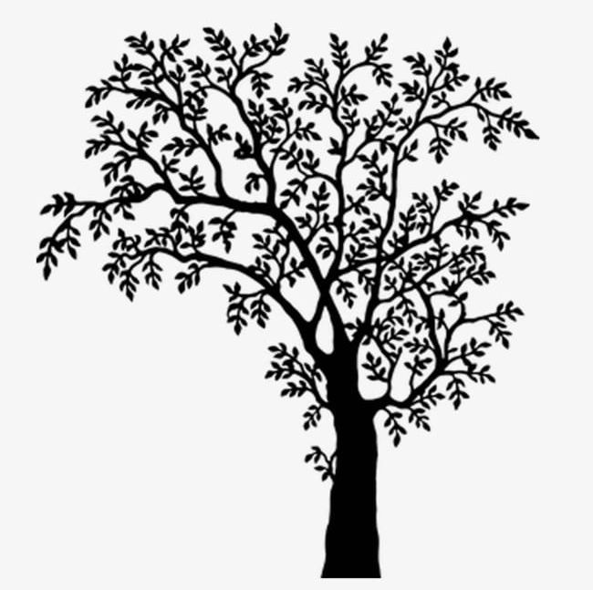 Black And White Tree Branches PNG, Clipart, Black, Black And White.