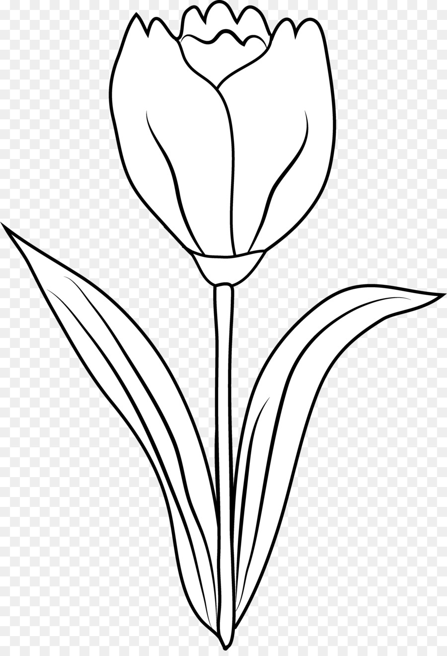 Tulip clipart black and white 4 » Clipart Station.