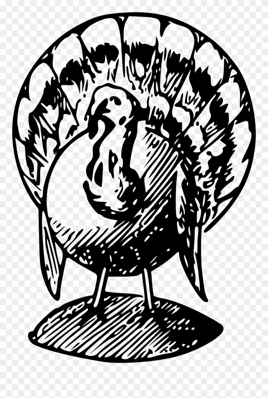 Cute Turkey Clipart Black And White.