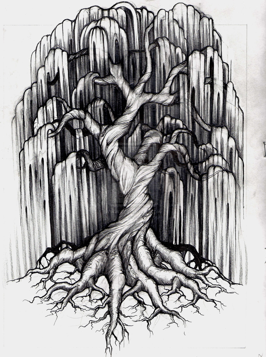 Weeping Willow Tree Black And White Tattoo black and white...