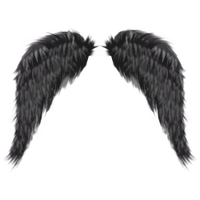 Download Dark Angel Free PNG photo images and clipart.