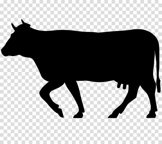 Angus cattle Salers cattle Charolais cattle Beefmaster Zebu.