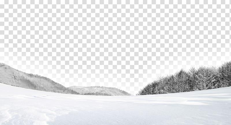 Shulin District White Snow Winter, White snow transparent.