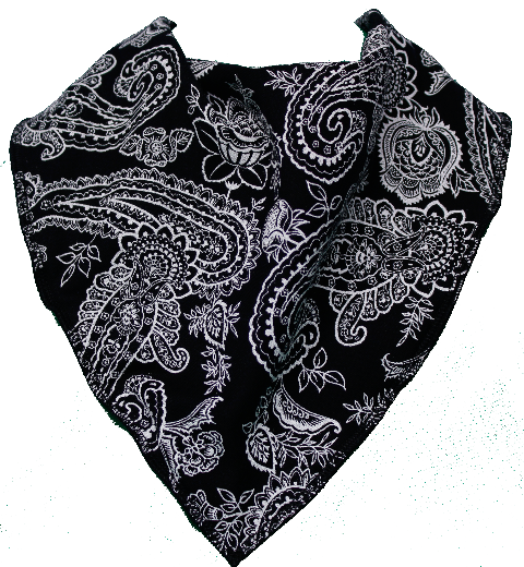Black Bandana Png (97+ Images In Collect #523385.