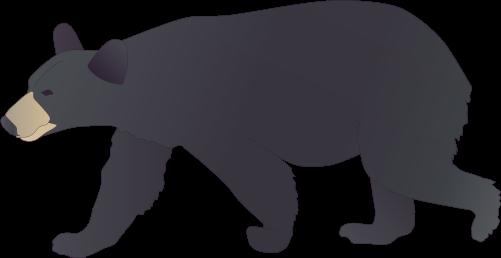Black bear clipart - Clipground