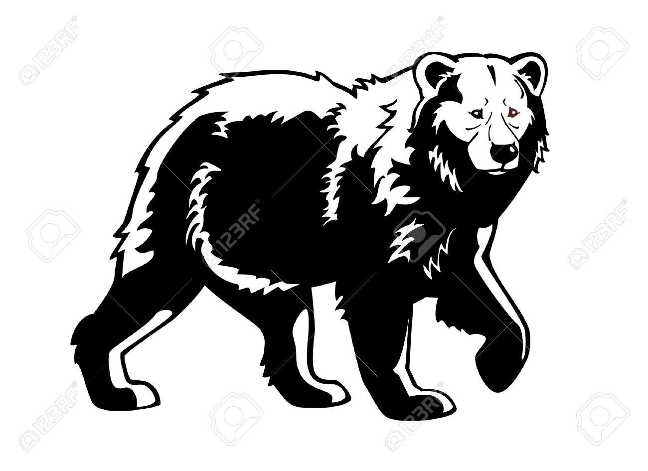 bear black white isolated on white background.