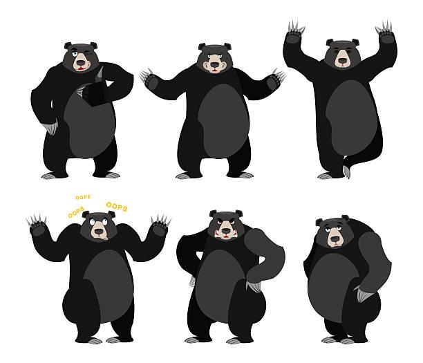 Best American Black Bear Illustrations, Royalty.