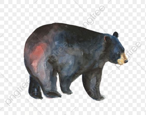 Watercolor Black Bear, Watercolor Clipart, Animal, Painted Black.