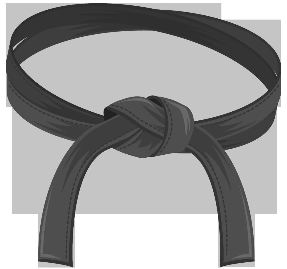 What is Six Sigma Black Belt.