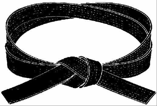 Karate Black Belt Clipart.