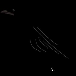 Black bird clipart.
