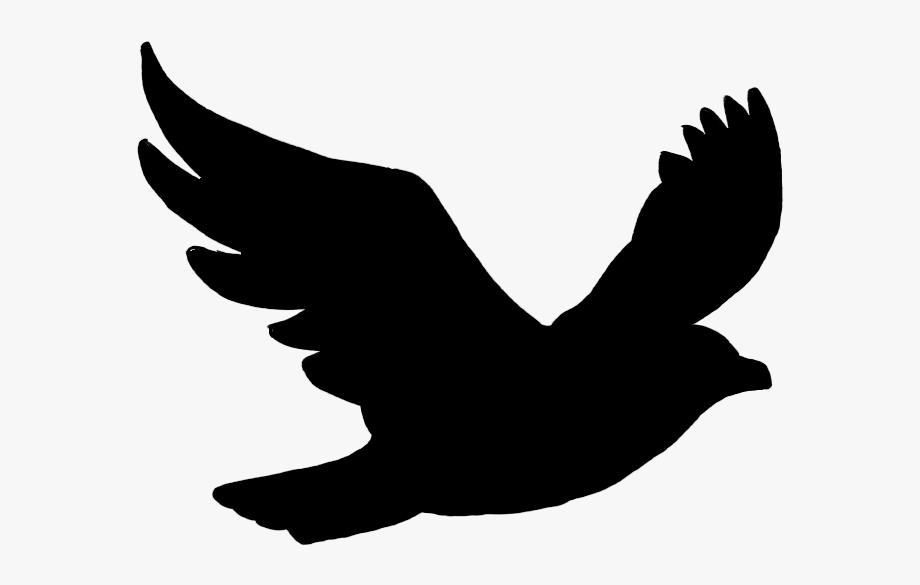 Bird Flight Silhouette.