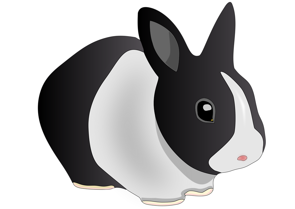 Black Bunny Clipart Images Pictures.