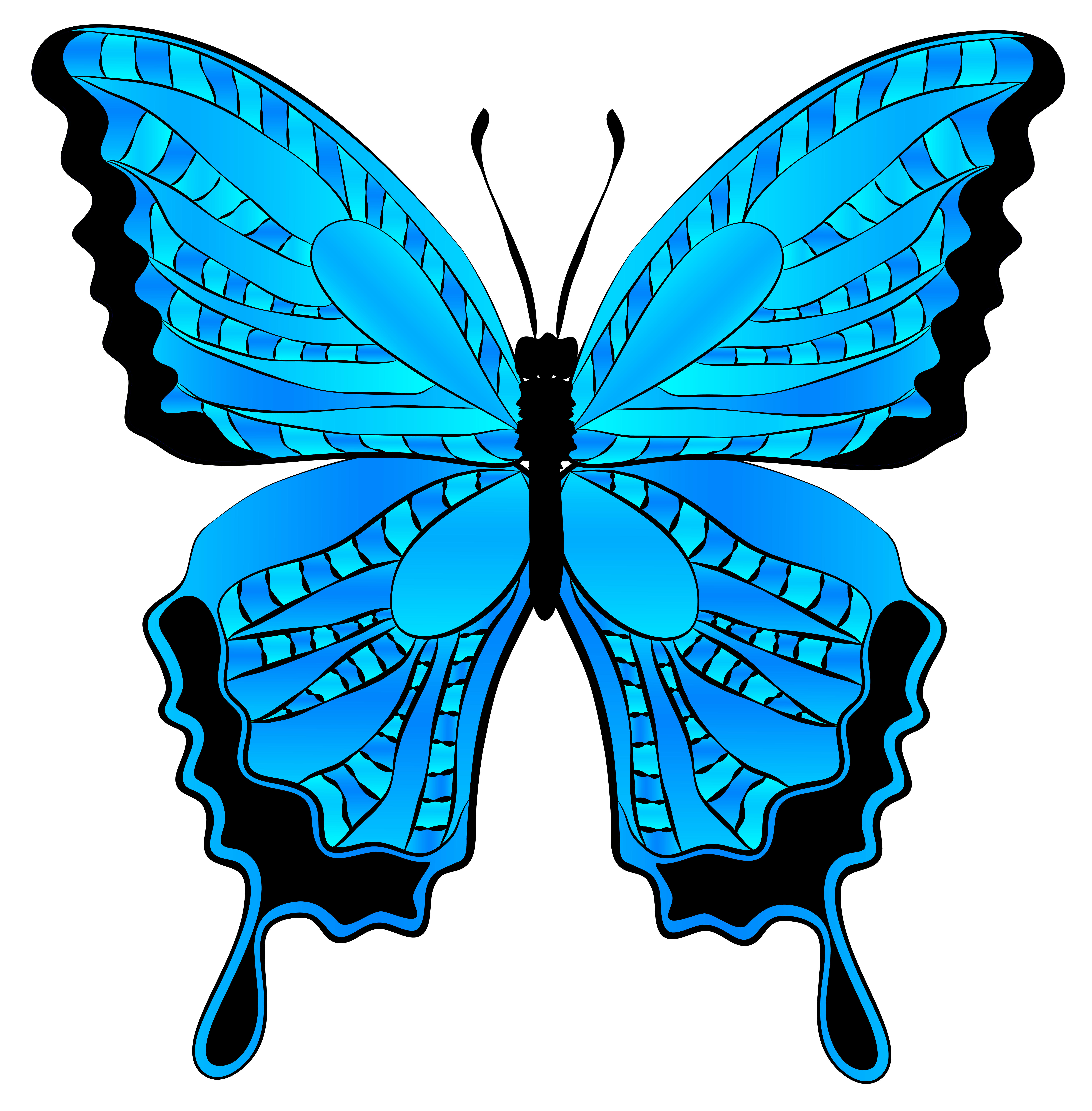 Blue and black butterfly clipart.
