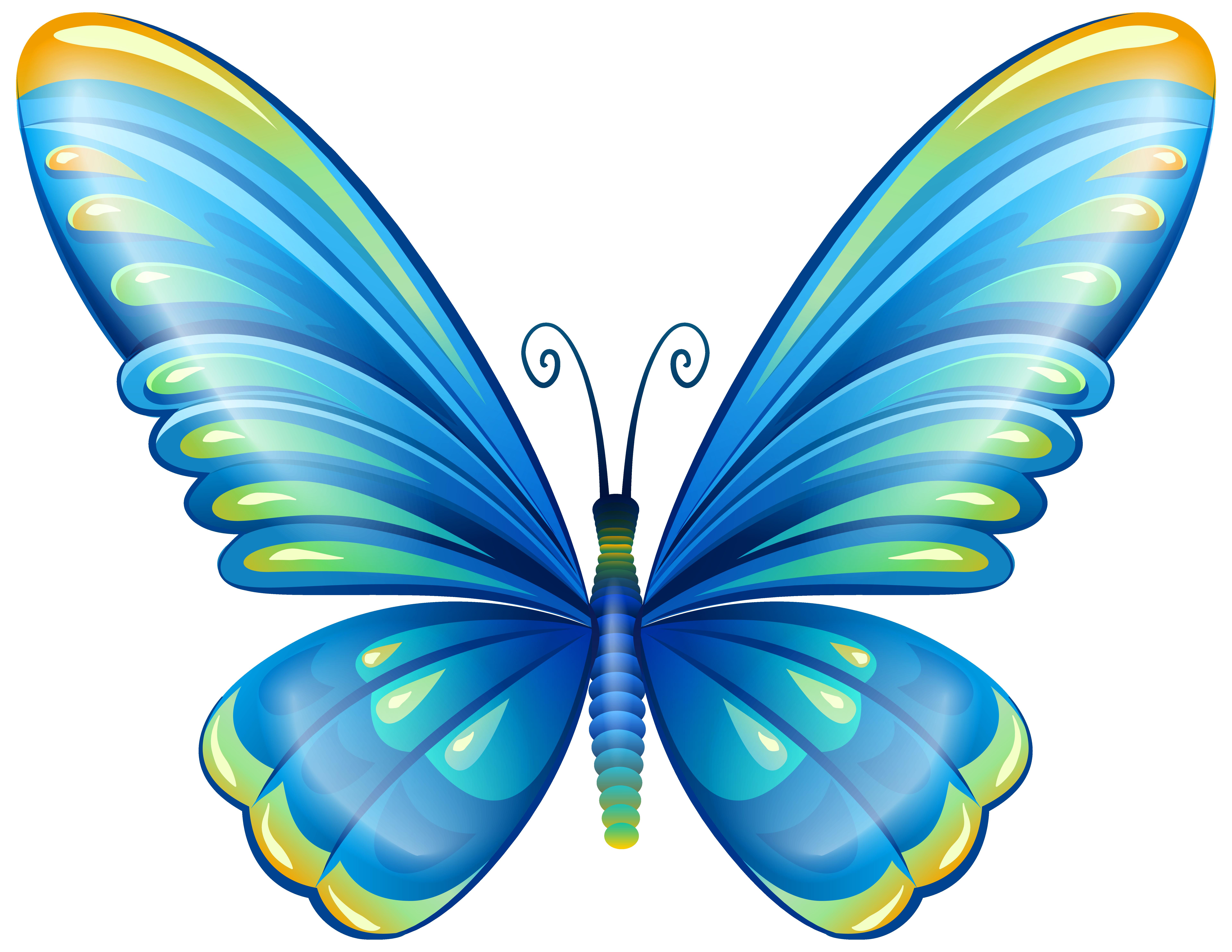 Butterfly Clip Art & Butterfly Clip Art Clip Art Images.