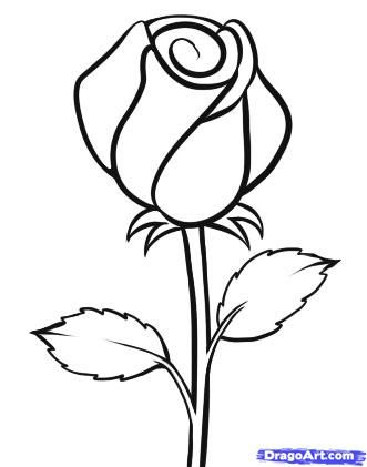 1000+ images about Doodle Roses on Pinterest.