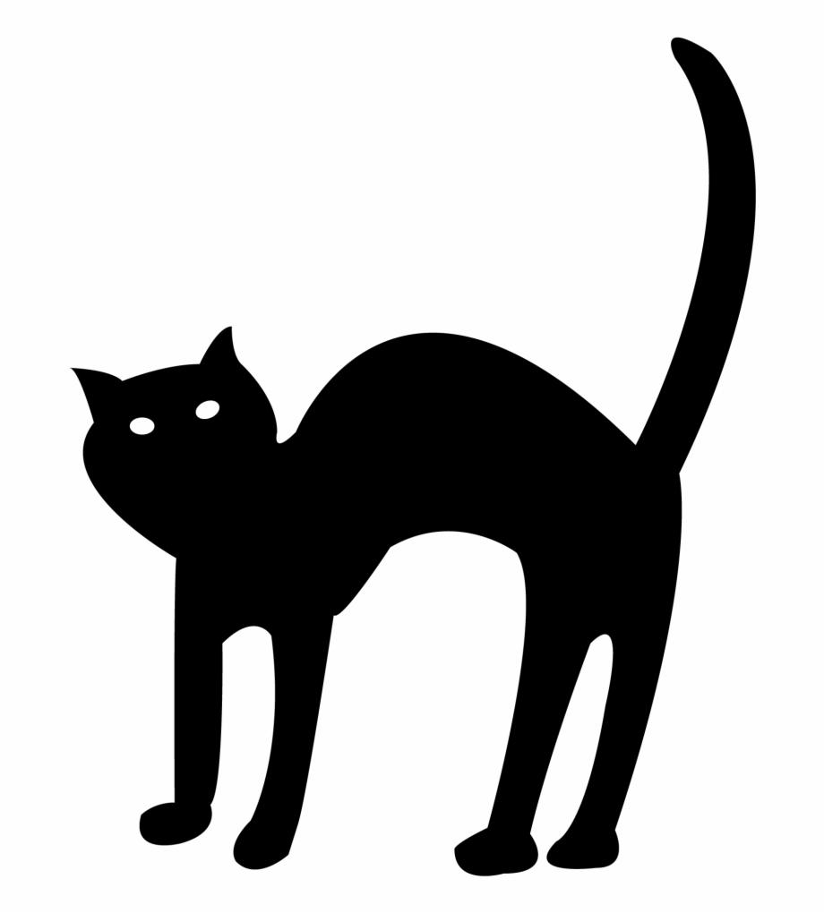 Halloween Black Cat Vector Free Transparent Background.