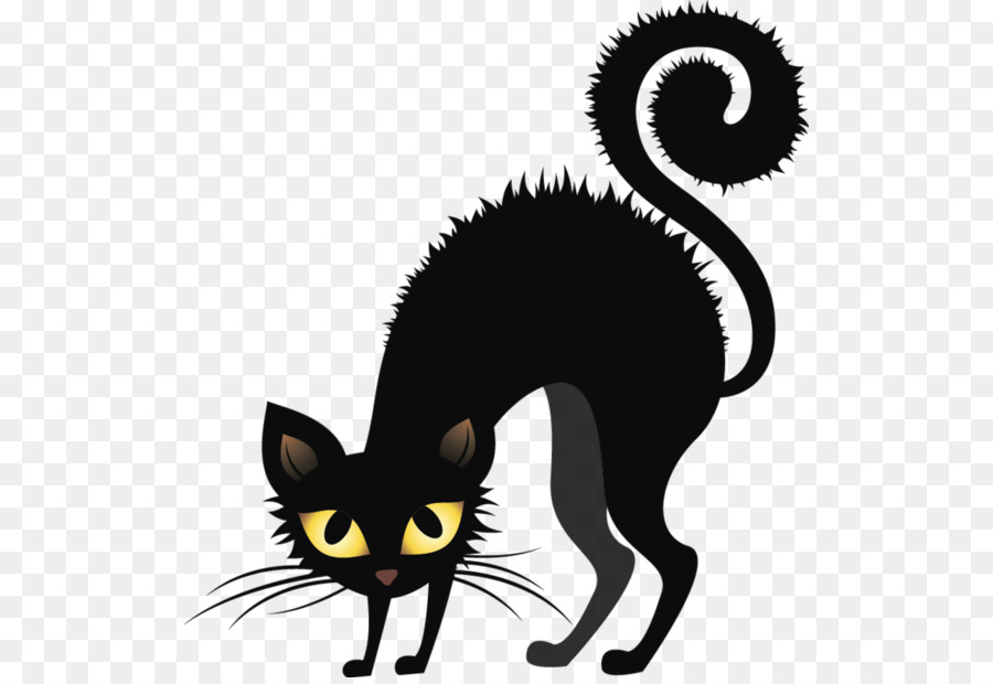 Black Cat Halloween clipart.
