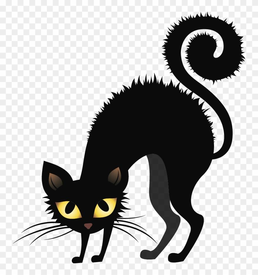 Bristling Black Cats.