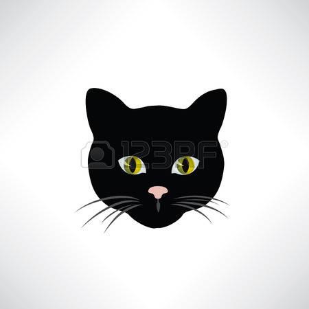 Black Cat Head Photo Clipart Clipground
