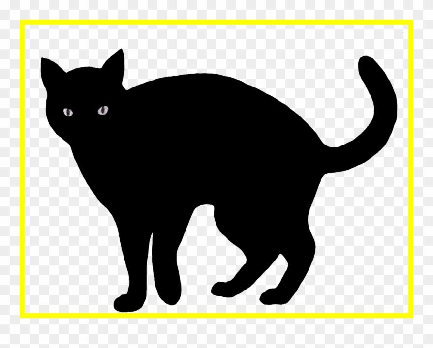 Scared Cat Clipart 7.